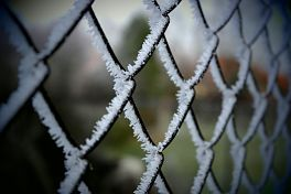 Image of a frozen boundary fence.