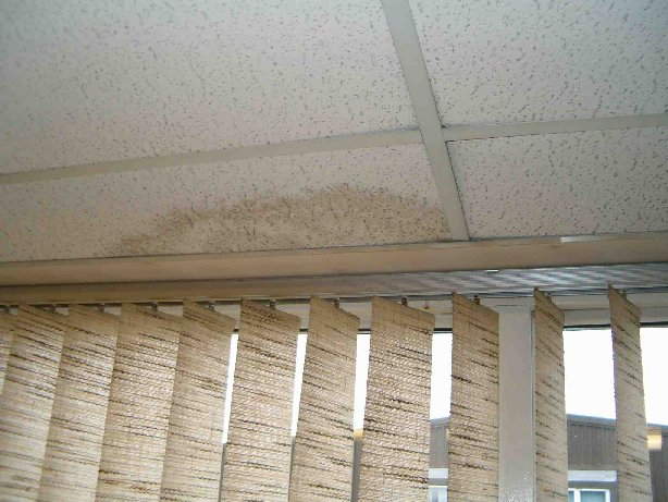 image of damp to an office ceiling.
